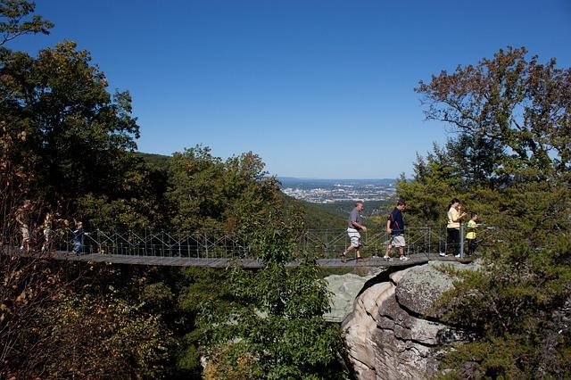 טיולים לגשרים התלויים ופארק נשר
